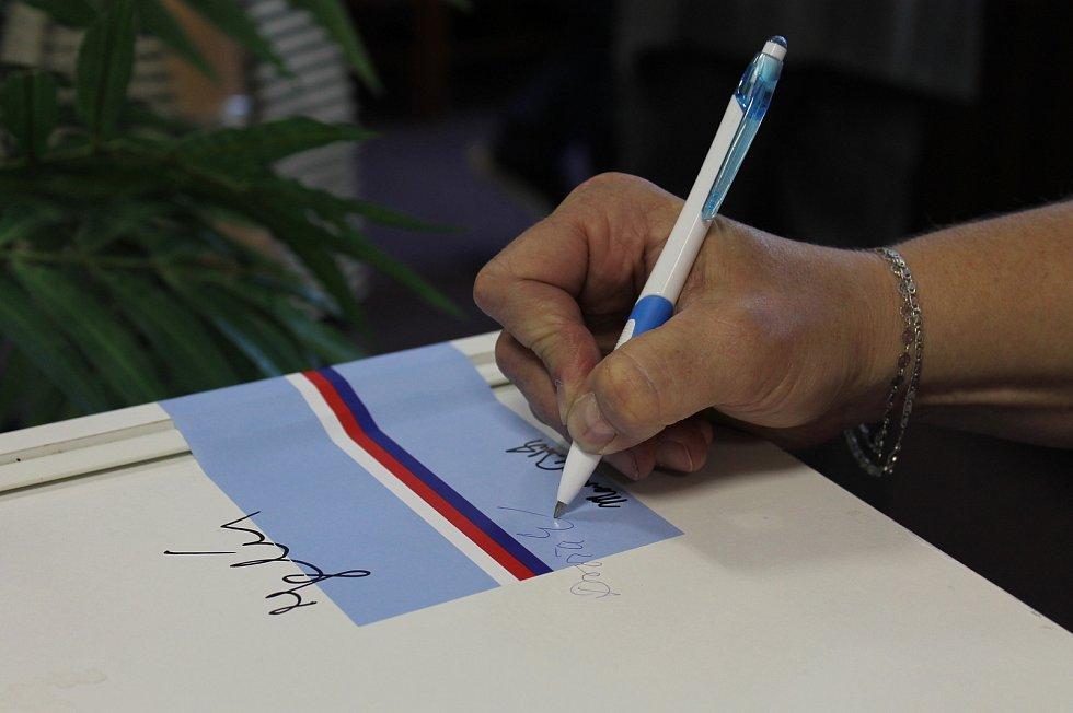 Volby do Evropského parlamentu, Vladislav 24. 5. 2019