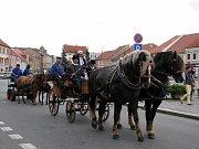 Koně živé vystřídali v sobotu dopoledne na Karlově náměstí v Třebíči ty pod kapotou a lákali na XX. Chovatelský den.