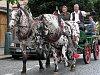 Chovatelský den láká na dostihy, fríské koně a rej bryček