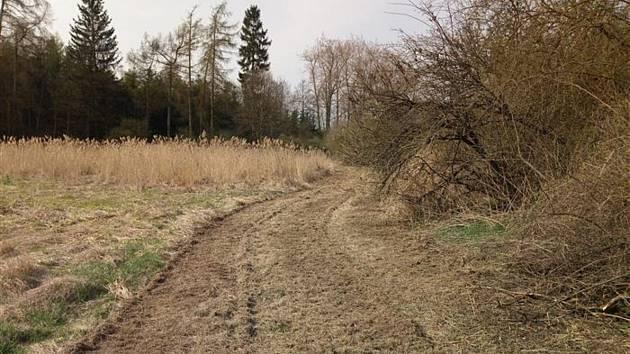 Brigádníci obnovili pěšinu od Pilného rybníka ke koupališti