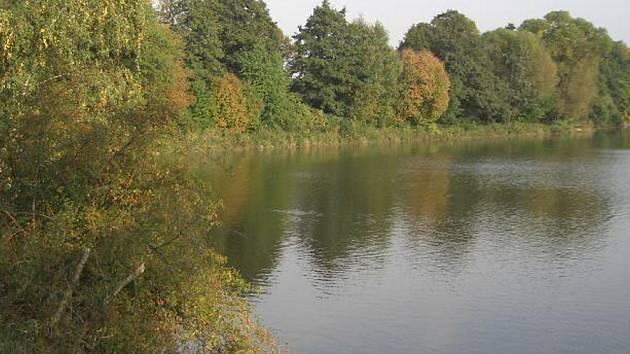 Kvůli znečištění vody by se na Vysočině lidé neměli koupat v rybníku Okrouhlík, který leží v chatové oblasti u Čížova na Jihlavsku.