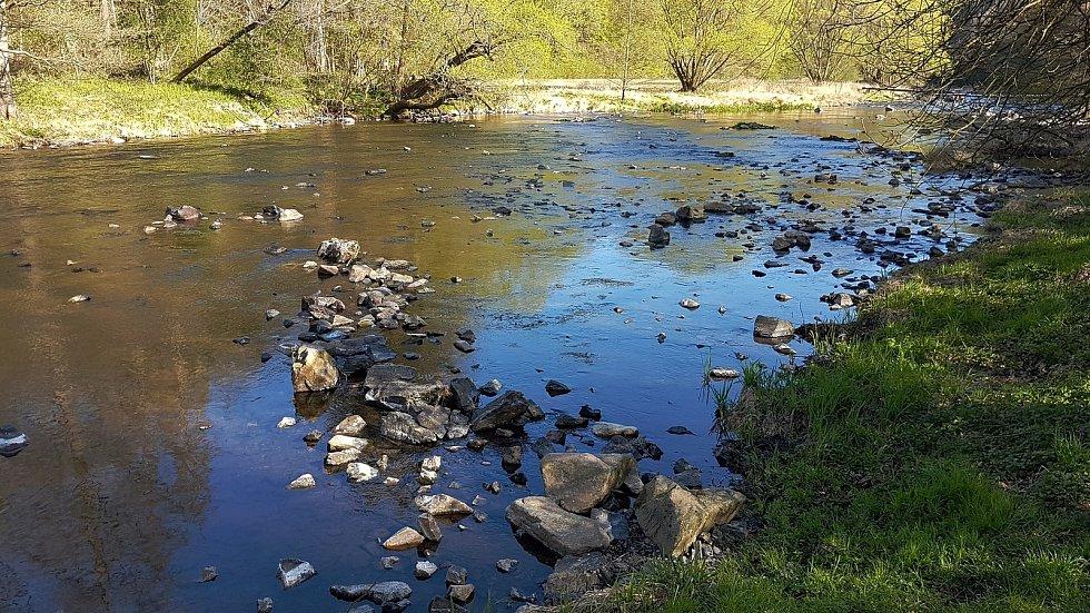 Řeka Jihlava pod zříceninou hradu Templšýn a Biskoupkami.