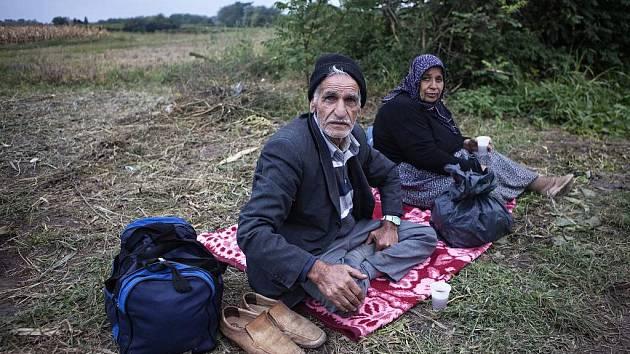 Dvojice syrských uprchlíků na poli u chorvatské vesničky Bapska.
