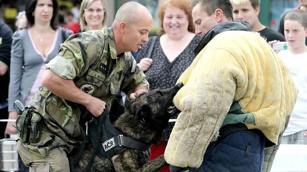 Odpoledne na Karlově náměstí v Třebíči i v úterý patřilo akci Týden s armádou. Lidé si tentokrát mohli prohlédnout záchranářskou techniku a viděli, jak probíhá výcvik služebních psů.