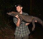 Krokodýli chytá Václav Gvoždík v noci a pouze rukama. V případě větších jedinců si vezme na pomoc jen kožené rukavice. S vrhací sítí by v hustém porostu nepochodil.