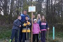 Děti s učitelem Pavlem Šplíchalem vysadily Osvětimský dub na Dálce.