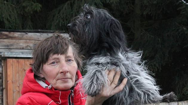 V Čechočovicích nechali veterináři odebrat chovatelce 15 psů kvůli nevyhovujícím podmínkám.