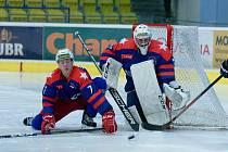 Karel Nedbal se nakonec dohodl s šéfem hokejové Třebíče Svobodou a bude nadále oblékat dres Horácké Slavie.