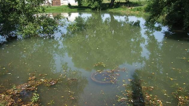 Stejně jako rybník na návsi i tento rybník byl na jaře odbahněn. Na úpravu a zpevnění podemletých břehů však nedošlo. Jelikož rybník sousedí s hřištěm, kde si hrají děti, mají místní obavy, aby se s dětmi podemletý břeh neutrhl.