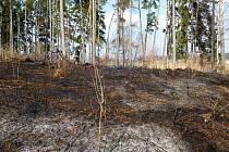 Starší žena pálila na ohništi u své chaty suchou trávu a listí. Stačil však slabý poryv větru a ohýnek se z ohniště rozlétl do blízkého lesa.