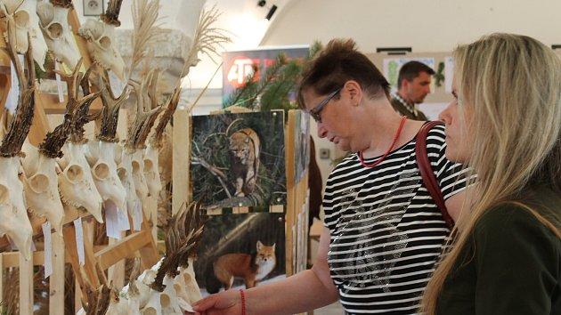 Lovci se chlubí na výstavě i dvěma úlovky se stříbrnou medailí