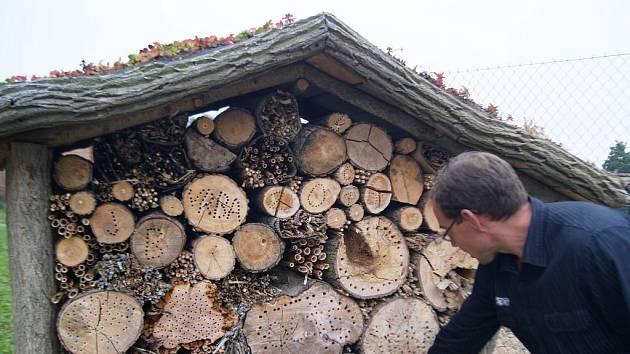 Zahradník Vladislav Vejtasa ukazuje hmyzí hotel. Je sestavený z různých druhů dřev, vlnitého papíru a cihel, má střechu osázenou rozchodníky.