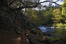 Krásy Třebíčska. Údolí řeky Oslavy nedaleko hradu Lamberk. Ilustrační foto.