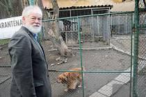 Třebíčský zvířecí útulek provozuje město prostřednictvím městské policie.