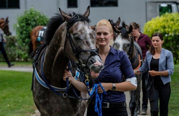 Foto 1: České derby vroce 2018.Ve Velké Chuchli jsem vodila koně jménem Darkolva.