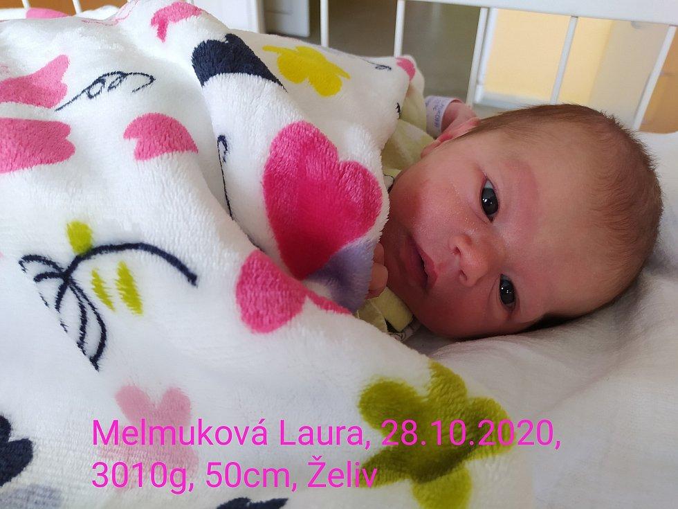 Laura Melmuková, 28.10. 2020, Želiv, 50 cm, 3010 g