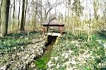 Naučná stezka okolo rybníka Zámiše. Okruh Bažantnice láká k příjemné procházce