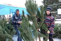 Sortiment stromků se leckde s blížícími se svátky zužuje.  Mnohde již nejsou k mání jedle či smrčky, zájem je i o nejdražší stromky.