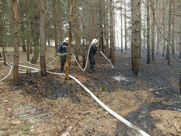 Lesní požáry na Třebíčsku.