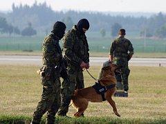 U Náměště slouží kromě vojáků i psi.