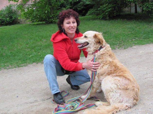 Psí útulek v Třebíči uspořádal v sobotním dopoledni i za deštivého počasí hromadnou psí vycházku. I přes nepřízeň počasí na ni dorazilo více než na tři desítky lidí.