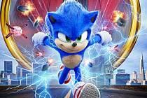 Třebíčské kolečko Na Kopcích v Třebíči. Ježek Sonic