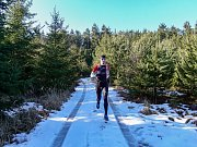 Běh 41 km: Česká Kanada.