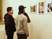 Výstava Ivany Bártíkové.