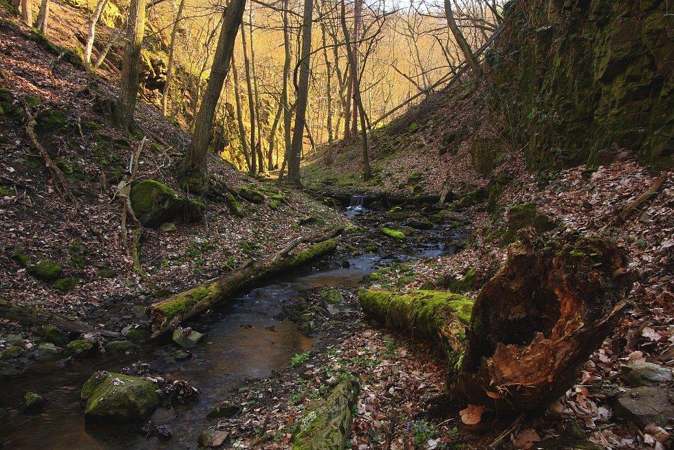 Rokle potoka Mohelnička.