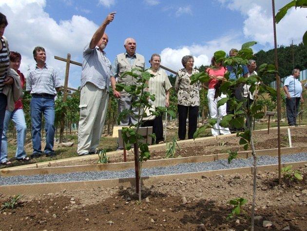 Na Sádku otevřeli zahradu čínských léčivých rostlin