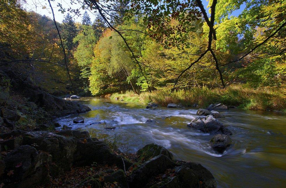 Údolí řeky Oslavy pod hradem Lamberkem.