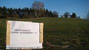 Koniklec velkokvětý v lokalitě Špilberk u Náměště nad Oslavou