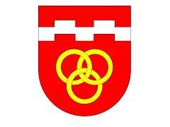 Dekret o udělení znaku a vlajky převezmou v pondělí 25. června zástupci Babic v Poslanecké sněmovně.
