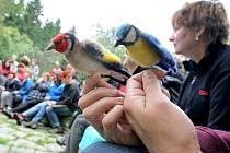Právě poslední den patřil přednáškám a pozorování opeřenců pod vedením jihlavských ornitologů.