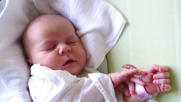 Dita Hamplová, Velké Meziříčí, 13. března 2011, 3900 g, 50 cm.