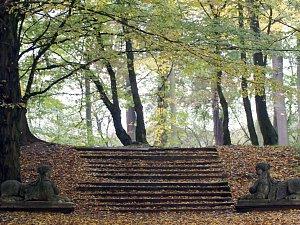 Park se sfingami obléká barvy podzimu. Podívejte se