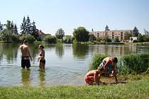 Rybník Kuchyňka v Třebíči.