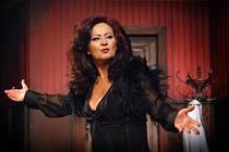 OCENĚNÁ SIMONA STAŠOVÁ. Porota cen Thálie herečce za roli vtragikomedii Drobečky z perníku udělila cenu za nejlepší ženský jevištní výkon.