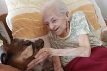 Kozy na cestách v Domově pro seniory