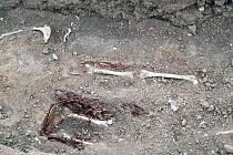 Většina lidských kostí, které vykutali dělníci při stavbě školní tělocvičny v Jaroměřicích nad Rokytnou, se nyní dočkala definitivních hrobů.