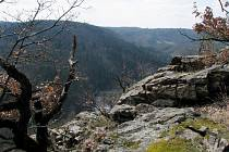 Údolí řeky Jihlavy. Ilustrační foto.