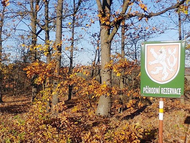 V lokalitě vzniknou dvě menší národní rezervace, které zaberou pouze třetinu z původní rozlohy.