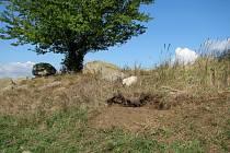 Jak to vypadá, když balvan zmizí, je poznat z těchto obrázků. Díra je vidět do daleka. V tomto případě však naštěstí nešlo o chráněné území či přírodní park, ale jen o kámen na ostrůvku v poli.
