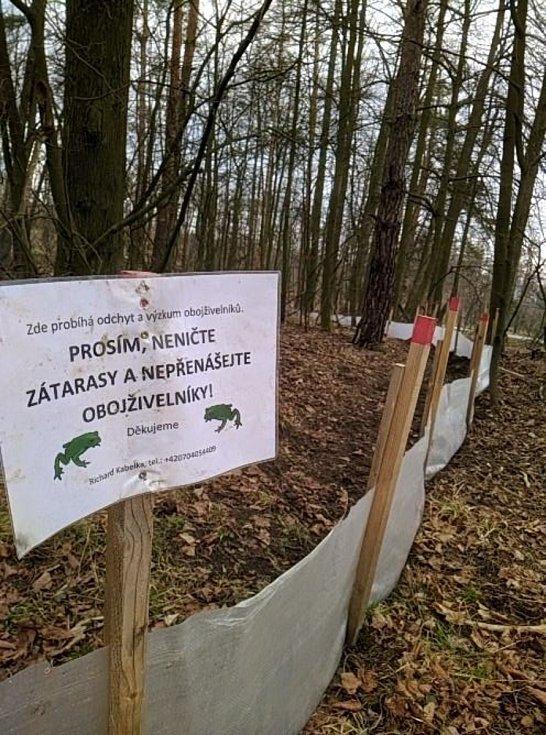 Stavba dočasných zábran u rybníka Jarošovský Kacíř na Třebíčsku.