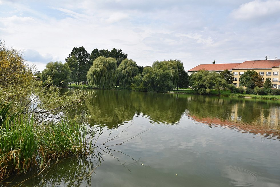 Projekt revitalizace rybníku Kuchyňka na okraji Třebíče uspěl v participativním rozpočtu.