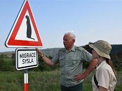 Syslí kolonii u Mohelna chrání speciální dopravní značka Pozor sysel.