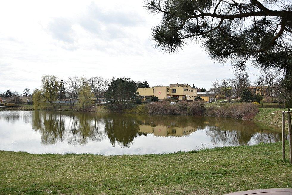 Dolní rybník v centru Hrotovic.