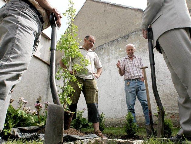 Populární botanik Václav Větvička se v pátek stal patronem skalky Karla Čapka v Jaroměřicích nad Rokytnou. Skalku u muzea Otokara Březiny zbudoval místní zahradník Vladislav Vejtasa.