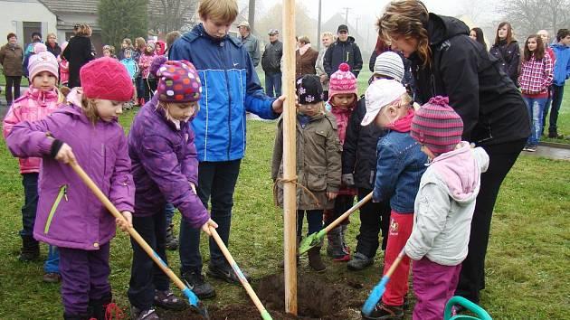 Dolním Vilémovicím se dostalo jako teprve šestému místu cti přijmout mladou hrušeň, která vznikla z roubu jediného ovocného stromu, který přežil vypálení Lidic nacisty. Symbolicky ji vysadily děti. Právě pro ně je strom Poslem naděje.