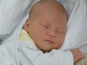Podívejte se na miminka z třebíčské porodnice a hlasujte v anketě